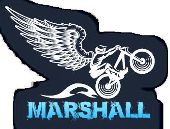 Продажа электровелосипедов MARSHALL по России